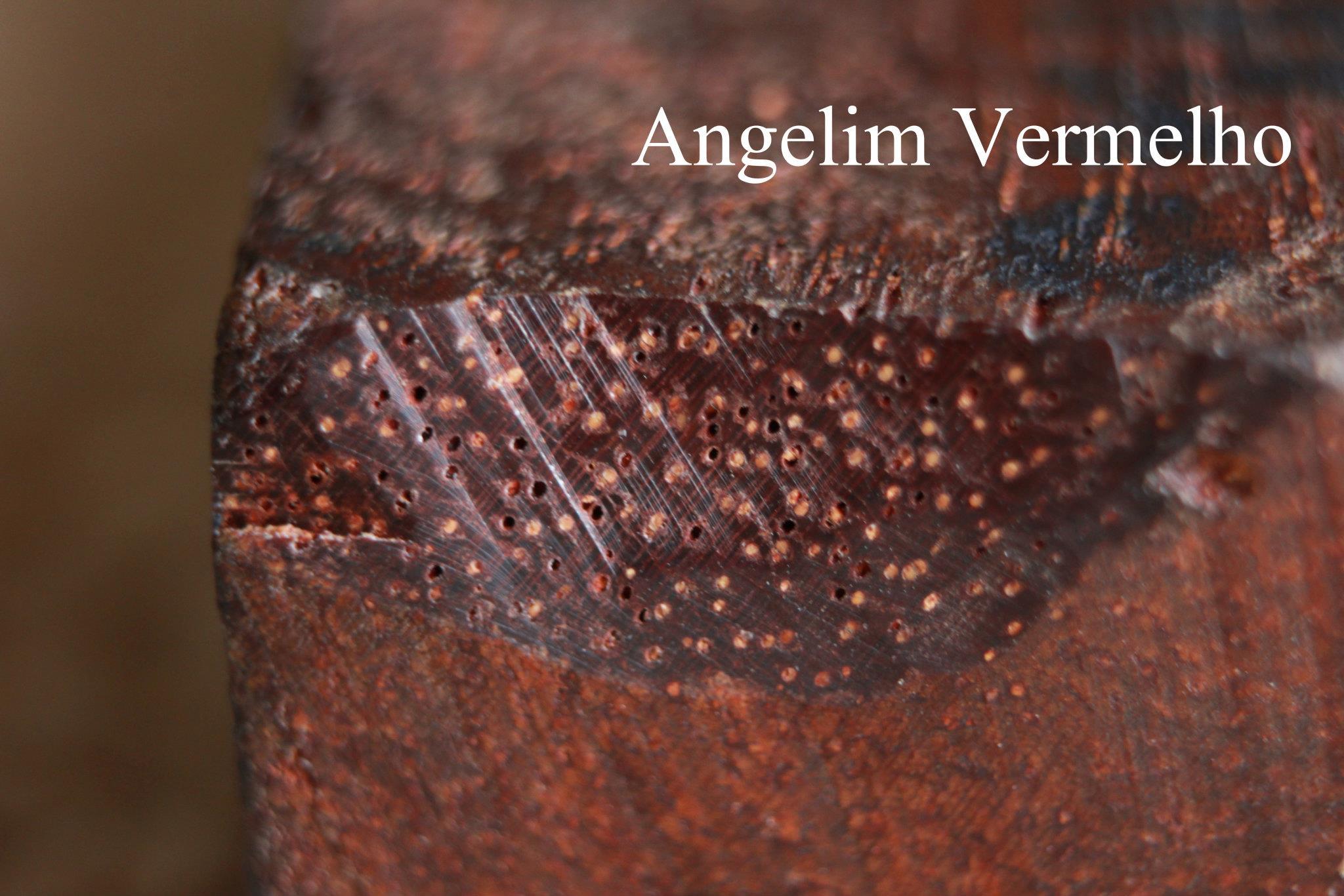 เนื้อไม้ Angelim Vermelho