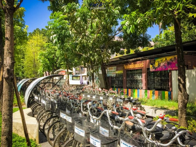 จักก้าเซ็นเตอร์ ซื้อ ซ่อม ยืมจักรยานได้ที่นี่
