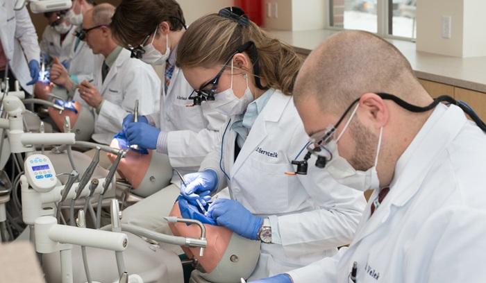 อันดับ 1 สาขาวิชาแพทย์และทันตกรรม (Medicine and Dentistry)