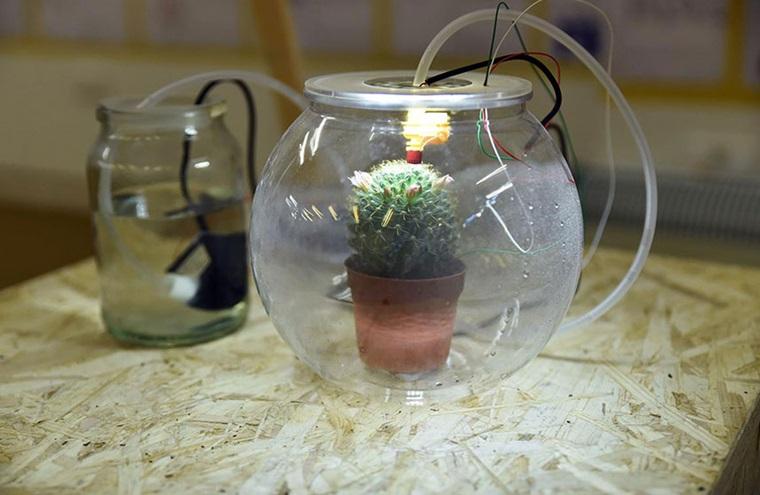 Self Waterer Plant Pot – S.W.P.P.