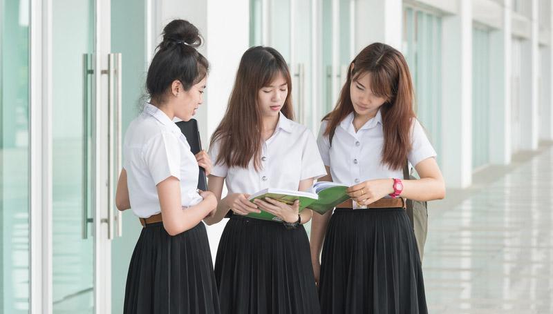 นักศึกษา ฝึกงาน