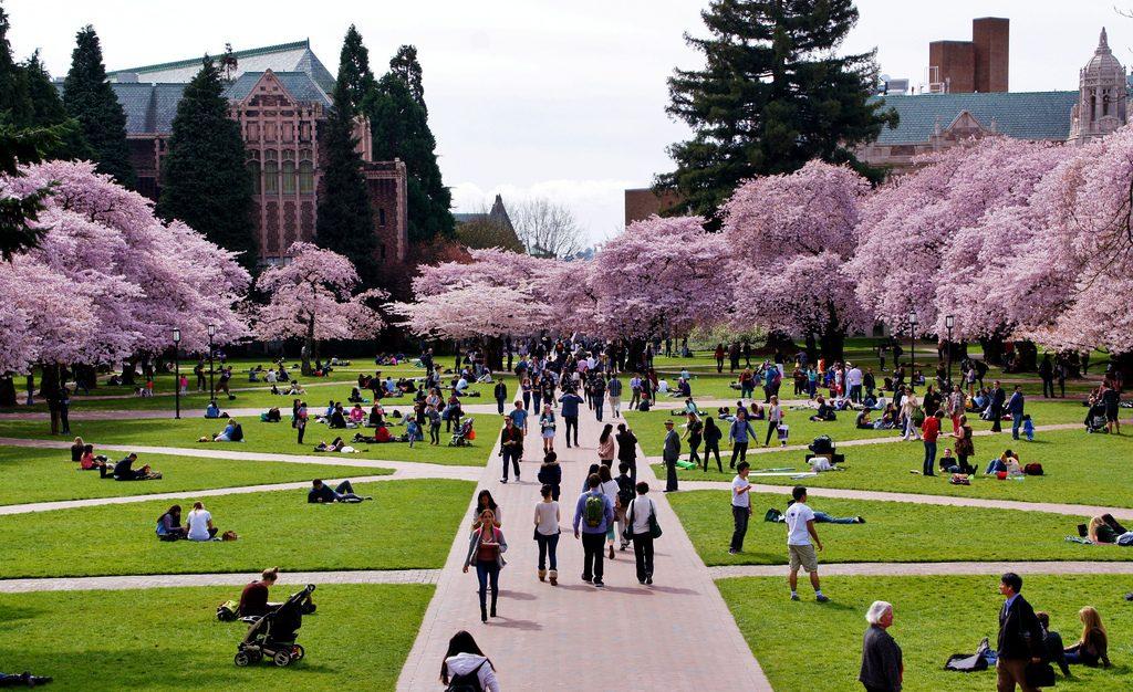 มหาวิทยาลัยวอชิงตัน (University of Washington)