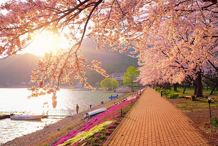 ขอวีซ่าเรียนต่อเกาหลี สถานเอกอัครราชทูตสาธารณรัฐเกาหลีประจำประเทศไทย เกาหลีใต้ เรียนเกาหลีใต้