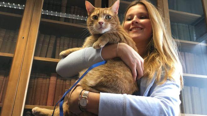 Cambridge University อังกฤษ แมว
