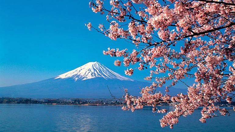 ข่าวการศึกษาญี่ปุ่น ทุนรัฐบาล ทุนรัฐบาลญี่ปุ่น เรียนต่อญี่ปุ่น
