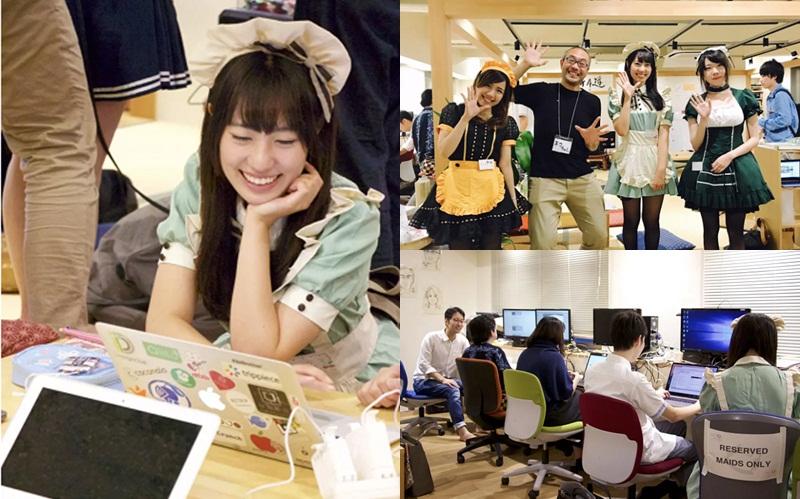 ข่าวการศึกษาญี่ปุ่น โรงเรียนสอนเขียนโปรแกรมญี่ปุ่น