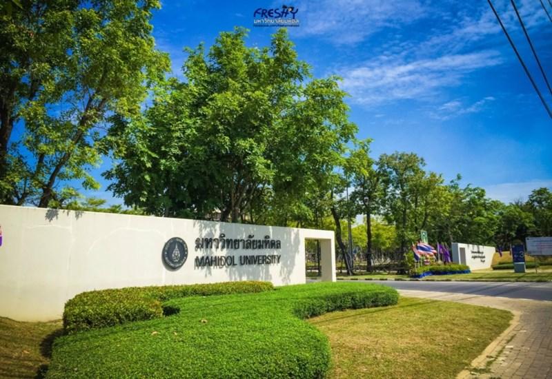 UniRank การจัดอันดับ มหาวิทยาลัย มหาวิทยาลัยชั้นนำของไทย มหาวิทยาลัยไทย