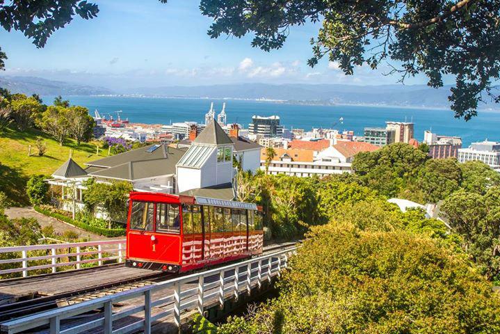 เวลลิงตัน (Wellington)
