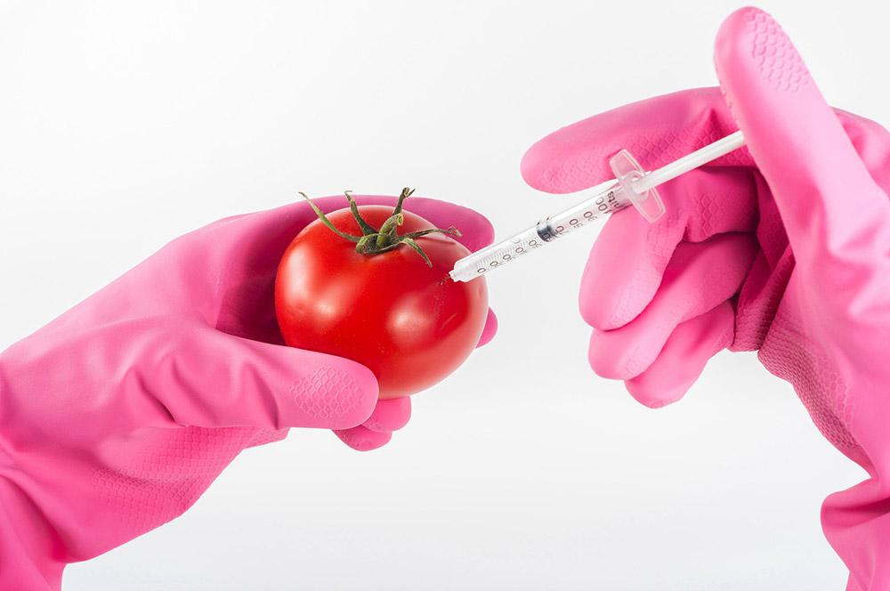 นักวิจัยอาหารสุดว้าว ก้าวสู่โลกแห่งนวัตกรรมอาหาร