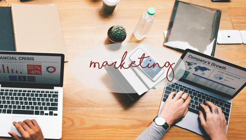 Marketing จบแล้วทำงานอะไร สาขาการตลาด เรียนอะไรดี