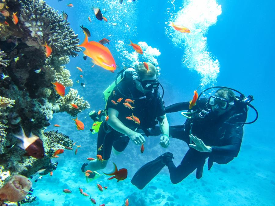 การเรียนดำน้ำในไทย