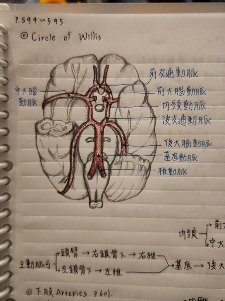 เทพสุด ๆ ฝีมือการจดเลคเชอร์ ของนักศึกษาพยาบาลชาวไต้หวัน