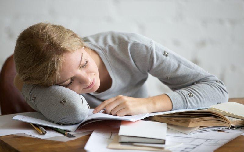 การนอน 101 (Sleep 101) มหาวิทยาลัยฮาร์วาร์ด วิชาแปลก