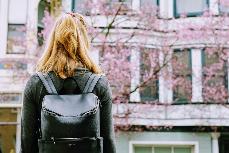 เรียนต่อที่ประเทศญี่ปุ่น