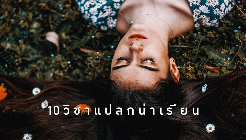 คณะน่าเรียน มหาวิทยาลัยไทย วิชาแปลก หลักสูตรการเรียนการสอน