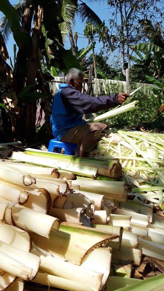 ศิษย์เก่า สถาปัตย์ จุฬาฯ ผุดไอเดียงานคราฟท์ ผลิตภัณฑ์ทำจากกาบกล้วย รักษ์โลก