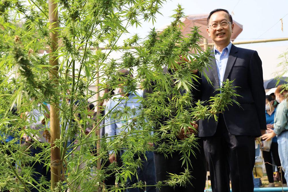 งานเสวนา ร่วมคิดร่วมฝัน ปลุกปั้นกัญชงไทย