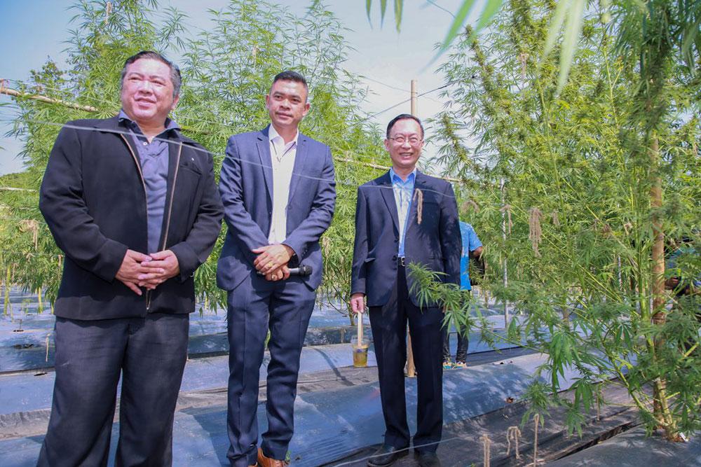 งานเสวนา ร่วมคิดร่วมฝัน ปลุกปั้นกัญชงไทย ให้ความรู้ประชาชน